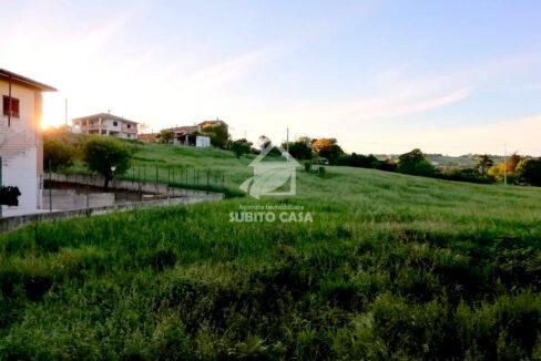 CB-Cda Colle Longo 113211
