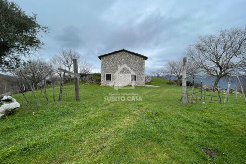 Sesto Campano 153214